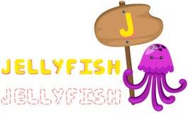 Alfabeto animal j con las medusas Fotos de archivo