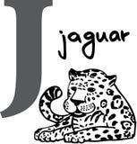 Alfabeto animal J (jaguar) Foto de Stock Royalty Free
