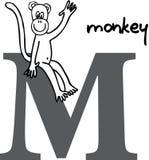 Alfabeto animal M (mono) Foto de archivo