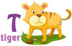 Alfabeto animal T Imagen de archivo libre de regalías