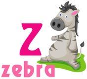 Alfabeto animal Z Fotografía de archivo libre de regalías