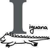 Alfabeto animale I (iguana) Fotografie Stock