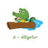 Alfabeto animale isolato per i bambini, A per l'alligatore Immagine Stock
