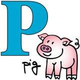Alfabeto animale P (maiale) Immagine Stock