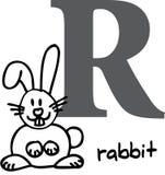 Alfabeto animale R (coniglio) Fotografie Stock