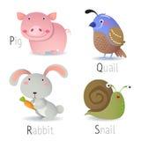 Alfabeto con gli animali dalla P alla S Fotografie Stock