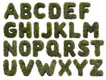 Alfabeto da grama imagem de stock