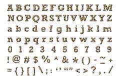 Alfabeto da hiena Fotos de Stock