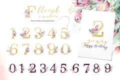 Alfabeto da letra do brilho do ouro Fontes e números alfabéticos dourados isolados no fundo branco Texto floral da fonte do casam imagens de stock