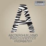 Alfabeto da listra da zebra e vetor dos números Foto de Stock