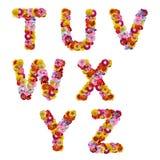 Alfabeto das flores fotografia de stock royalty free