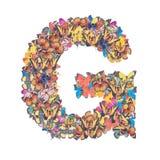 Alfabeto de G de la letra con la mariposa Fotografía de archivo
