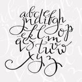 Alfabeto de la escritura del Flourish Imagen de archivo