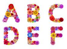 Alfabeto de la flor foto de archivo libre de regalías