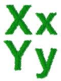 Alfabeto de la hierba verde Imagen de archivo