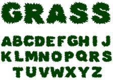 Alfabeto de la hierba verde Imágenes de archivo libres de regalías