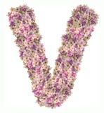 Alfabeto de la letra con el tipo del concepto de ABC de la flor como logotipo Foto de archivo