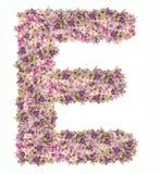 Alfabeto de la letra con el tipo del concepto de ABC de la flor como logotipo Imagen de archivo libre de regalías