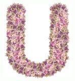 Alfabeto de la letra con el tipo del concepto de ABC de la flor como logotipo Fotos de archivo