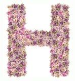 Alfabeto de la letra con el tipo del concepto de ABC de la flor como logotipo Foto de archivo libre de regalías