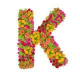 Alfabeto de la letra K hecho de la flor del zinnia Fotografía de archivo libre de regalías