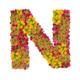 Alfabeto de la letra N hecho de la flor del zinnia Imagen de archivo