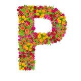 Alfabeto de la letra P hecho de la flor del zinnia Imagen de archivo
