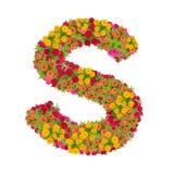 Alfabeto de la letra S hecho de la flor del zinnia Imagen de archivo