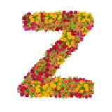 Alfabeto de la letra Z hecho de la flor del zinnia Fotos de archivo