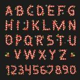 Alfabeto de la Navidad de los caramelos rojos y blancos Fotos de archivo libres de regalías