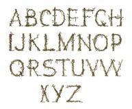 Alfabeto de la ramita, elegante Fotografía de archivo