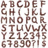 Alfabeto de los granos de café. Aislado en blanco. Fotos de archivo libres de regalías