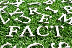 Alfabeto de madera en hecho de la fraseología en hierba verde artificial imagen de archivo