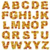 Alfabeto dei fogli di autunno Immagini Stock