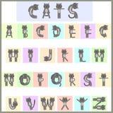 Alfabeto del gatto Immagini Stock