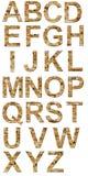 Alfabeto del ladrillo Foto de archivo libre de regalías