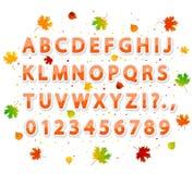 Alfabeto del otoño Fotos de archivo