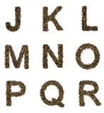 Alfabeto del té Fotografía de archivo