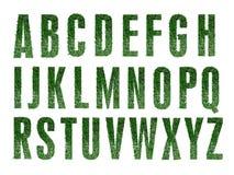 Alfabeto dell'erba Fotografia Stock