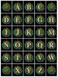 Alfabeto dell'ornamento Fotografia Stock Libera da Diritti