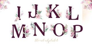 Alfabeto della lettera di scintillio dell'oro Fonti alfabetiche dorate isolate e numeri su fondo bianco Testo floreale della font royalty illustrazione gratis