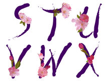 Alfabeto della sorgente con le lettere S, T, U, V, W, X dei fiori Fotografie Stock Libere da Diritti