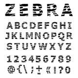 Alfabeto della ZEBRA. Fotografia Stock