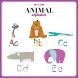 Alfabeto dello zoo di vettore con il fumetto e divertente svegli Immagine Stock