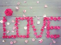 Alfabeto di AMORE con la rosa di rosa e di rosso Fotografia Stock