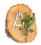 Alfabeto di legno rustico Immagini Stock Libere da Diritti