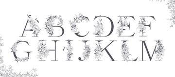 Alfabeto di nozze Iniziali con gli elementi botanici Disposizione del monogramma illustrazione vettoriale
