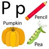Alfabeto di P Illustrazione Vettoriale