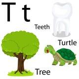 Alfabeto di T Illustrazione di Stock
