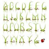 Alfabeto di vettore dell'erba verde Immagine Stock